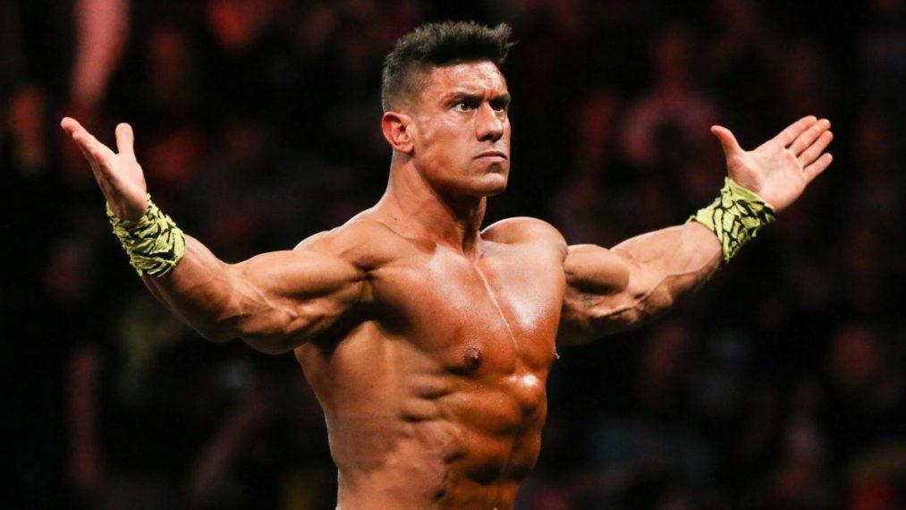 Luchadores que deberían volver a NXT