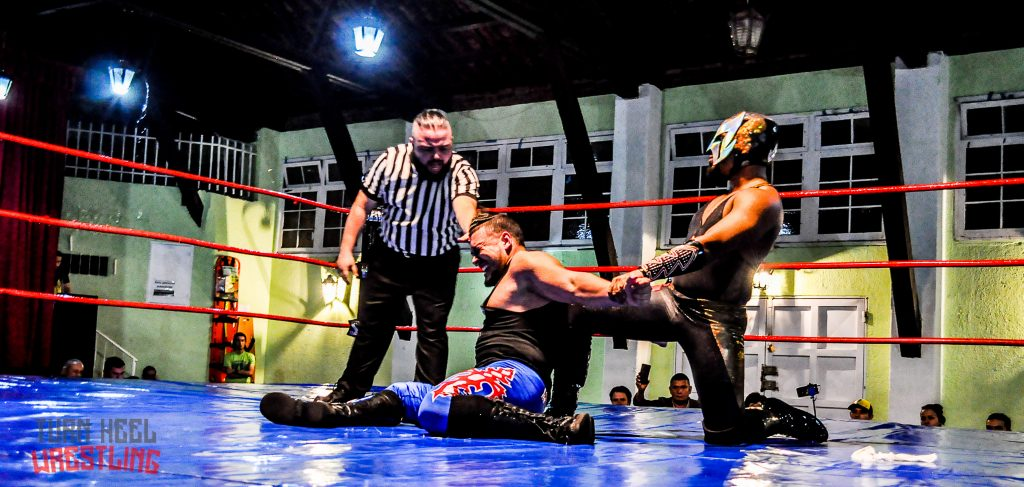 Grandes finishers del wrestling: llaves y sumisiones